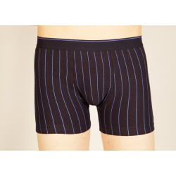 Navy blue boxer with blue stripes