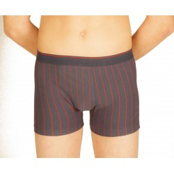 Boxer gris rayures rouges