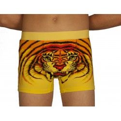 Yellow tiger boxer wholesaler De Bas En Haut Creations