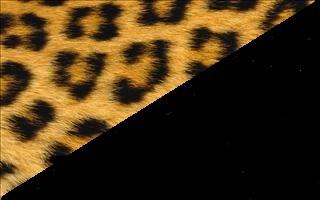 Leopard-Black